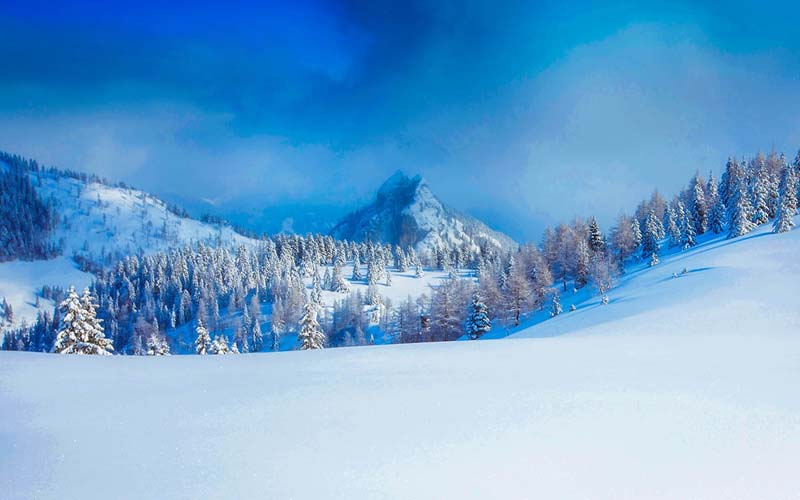 4 Ways to Stay Sane During Winter